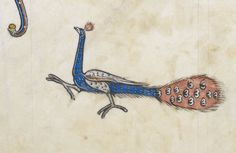 @DamienKempf Proud as a Peacock (@BLMedieval, Add 50000)