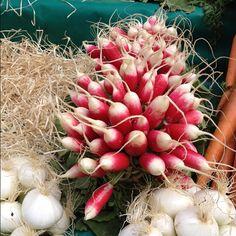 A bouquet of radishes. #paris