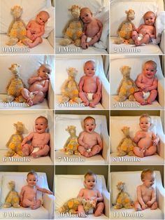 taking pictures in the same place with stuffed animal every month.