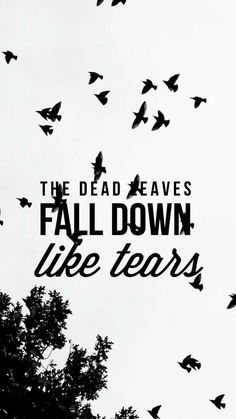 Dead Leaves // BTS