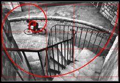 Reflexiones de un fotógrafo aficionado: El falso mito de la proporción áurea (Golden Ratio)