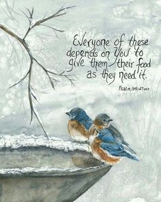 Everyone of these depends on you to give them their food as they need it - My passion is sharing Bible Promises; birds my favorite subject, watercolor the medium. Bible Verses Quotes, Bible Scriptures, Advent Scripture, Christian Faith, Christian Quotes, Bible Promises, Favorite Bible Verses, Rhone, Bible Art