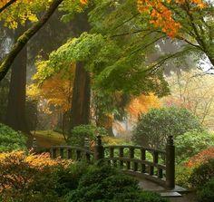 Autumn feels #LandscapeFotography