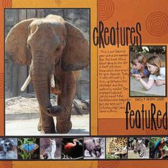 More inspiration to use larger photos - zoo scrapbook layout Vacation Scrapbook, Disney Scrapbook Pages, Scrapbook Page Layouts, Scrapbook Cards, Bridal Shower Scrapbook, Zoo Photos, Multi Photo, Photo Layouts, Creative Memories