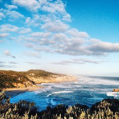 Best Day Trips From Melbourne: Mornington Peninsula Melbourne Victoria, Victoria Australia, Melbourne Australia, Australia Travel, Australian Road Trip, Cairns Queensland, Adventures Abroad, Airlie Beach, State Forest