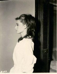 Net Photo: Audrey Hepburn: Image ID: . Pic of Audrey Hepburn - Latest Audrey Hepburn Image. Viejo Hollywood, Old Hollywood, Hollywood Makeup, Hollywood Glamour, Classic Hollywood, Divas, Audrey Hepburn Hair, Aubrey Hepburn, Hair Test