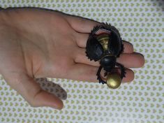 Excited to share the latest addition to my #etsy shop: Beetle brooch,Egyptian Scarab beetle,Egyptian style, gold, Ancient Egypt,Egyptian symbol of wealth,Gold animal,Insect jewelry http://etsy.me/2nBt0Qs #jewelry #brooch #gold #stainlesssteel #no #girls #black #animals
