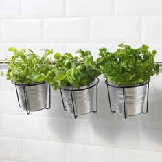 ikea Plant 6 pots with holder indoor