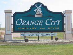Orange City, Iowa Northwestern College, Clydesdale Horses, Orange City, Tulip Festival, Staycation, Iowa, Great Places, Tulips, Thursday