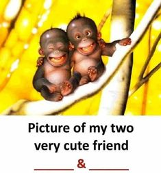 Ideas For Funny Pictures Friends Girls Bestfriends Funny School Jokes, Very Funny Jokes, Crazy Funny Memes, Really Funny Memes, Funny Facts, Exams Funny, Hilarious, Best Friend Quotes Funny, Friend Jokes