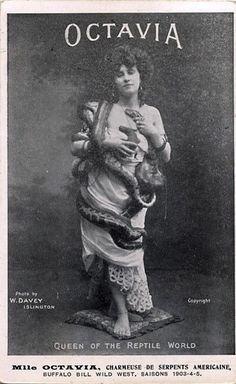 "The lady snake charmer was a staple feature of the sideshow at the turn of the 20th century. Known as the ""Yankee Snake Charmer,"" Octavia toured with Buffalo Bill's Wild West show. In a time when long skirts and sleeves were the established fashion, Octavia's form-fitting, sleeveless outfit covered with writhing snakes provided a sensual aspect to her act."