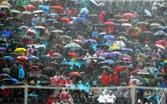 The public shelter from the rain during the Dressage Individual Grand Prix at Greenwich Park