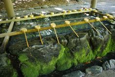 熱田神宮の手水場