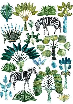 Best plants illustration jungle Ideas – Best Garden Plants And Planting Art And Illustration, Pattern Illustration, Animal Illustrations, Illustrations Posters, Jungle Art, Jungle Drawing, Jungle Animals, Flora Und Fauna, Tropical Pattern