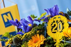 20 Jahre Niederösterreich Live, Plants, 20 Years, Hang In There, Plant, Planets