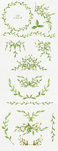 Foliage. Elegant floral set by NataliVA on Creative Market: