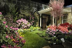 Image detail for -... Presented by Kepich & Associates at the 2007 Philadelphia Flower Show
