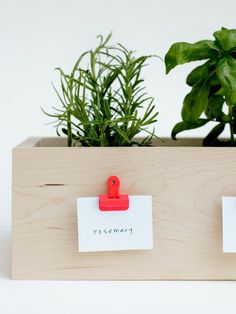 // diy herb planter. I've been wanting to start a (successful) herb garden for SO long now. Must try!