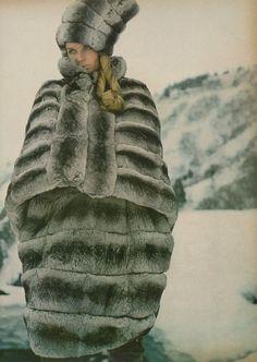The Great Fur Caravan