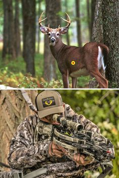 Remember these shot placement considerations before heading into the deer woods. Crossbow Hunting, White Tail, Stuff To Do, Deer, Shots, Animals, Painting, Animales, Animaux