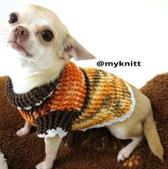 Handmade chihuahua dog fashion clothes craft arts crochet design by myknitt