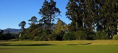 Golf Packages in George & Garden Route - George Lodge International Golf Tour, Golf Carts, Golf Courses, Tours, Club, Meals, World, Breakfast, Garden