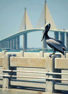 St Petersburg, Florida. Skyway Bridge