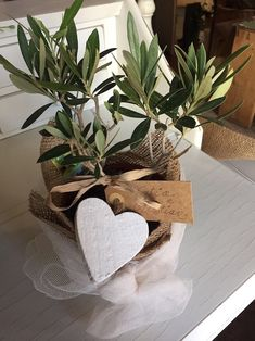 bomboniera piantina ulivo Wedding Favora, Forest Wedding, Engagement Party Planning, Bonsai, Burlap Flowers, Easter Table, Baby Party, Plant Decor, Flower Decorations