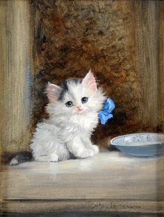beautiful kitten by Meta Pluckebaum