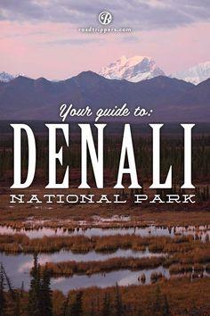 Denali National Park Alaska is an astonishing six million acres of pure wilderness!