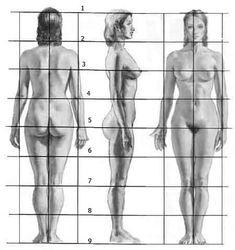 Proporzioni corpo umano