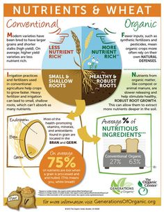 Great explanation of why we support organic foods!