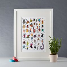 Natural history buff or insect enthusiast? Treat your wall to this neatly organised bug collection print. Featuring a selection of exotic creepy crawlies from all over the world.  Signed giclée A4 print of original artwork by James Barker. Made in the UK and printed on high quality 352gsm Superfine paper.  The print is sold unframed.
