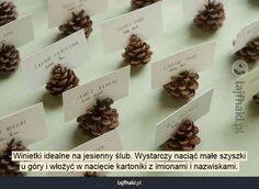 Winietki jesienne wesele - Winietki idealne na jesienny ślub. Wystarczy naciąć małe szyszki  u góry i włożyć w nacięcie kartoniki z imionami i nazwiskami.
