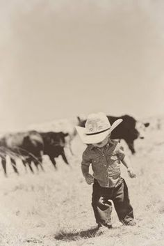 lil cowboy + cattle...great pic!