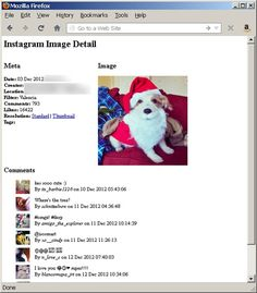 Screen capture of page that displays image details