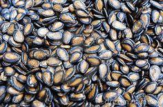 Scapa de Pietrele de la Rinichi in 7 zile cu Ceai din Seminte de Pepene Verde | Secretele Nordic Interior, Healing Herbs, Health Advice, Korn, Home Remedies, Royalty Free Images, Watermelon, Seeds, Health Fitness