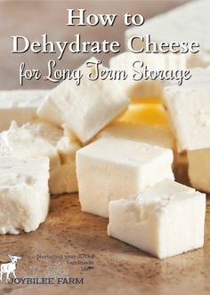 Extend the harvest and use the homestead abundance by dehydrating your homemade cheese Homestead abundance is overwhelming sometimes. Dehydrated Vegetables, Dehydrated Food, Freezing Vegetables, Survival Food, Survival Tips, Homestead Survival, Survival Skills, Survival Stuff, Survival Quotes
