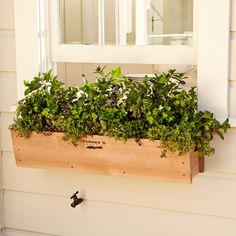 Cedar Window Box