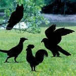 Four Birds Shadow Woodcraft Pattern These bird silhouettes will make a great display in your yard or on a building. #diy #woodcraftpatterns