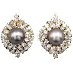 Harry Winston ~ Black Cultured Pearl Diamond Gold Earrings