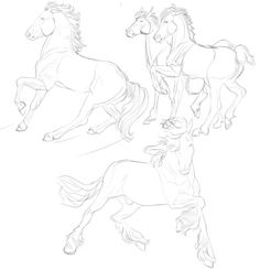 (Credit to artist) Horse Drawings, Animal Drawings, Art Drawings, Horse Anatomy, Anatomy Art, Art Reference Poses, Drawing Reference, Drawing Poses, Drawing Sketches