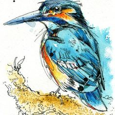 Ink Drawing Regal Kingfisher Wood Print - Abby Diamond - Artists - Printed on birch wood. Available in select sizes and finish types. Ready to hang out of the box. Bright white finish shown in the image to the left. Pen And Watercolor, Watercolor Animals, Bird Drawings, Ink Pen Drawings, Art Adulte, Art Paintings, Watercolor Paintings, Watercolours, Ink Art