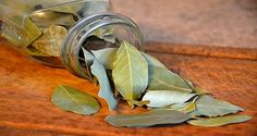 Burn-Bay-Leaves-in-the-House-and-See-What-Would-Happen-in-just-10-Minutes