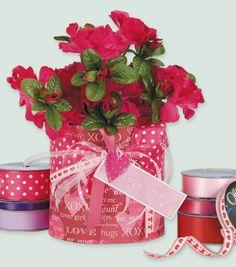 Sweetheart Ribbon Vase