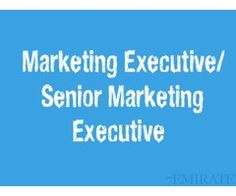 Experienced Marketing Executive Required for Company in Dubai