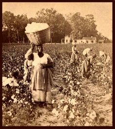 Slaves Working in Fields | SLAVES, EX-SLAVES, and CHILDREN OF SLAVES IN THE AMERICAN SOUTH, 1860 ...