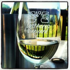 Love Lost Acres Chardonnay, Lost Acres Vineyard Granby CT