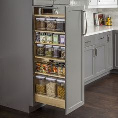 I love this pantry concept.  Very clean.  http://www.hardwareresources.com/pullout-organizers-ppo2-1148.html