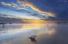 b i r d s ~ Australia by Aaron Pryor on 500px